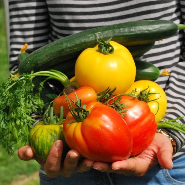s'alimenter durable paris