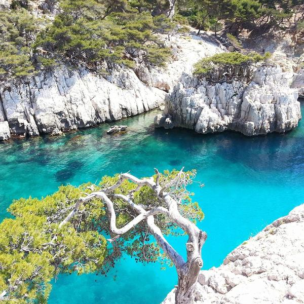 Photo des Calanques