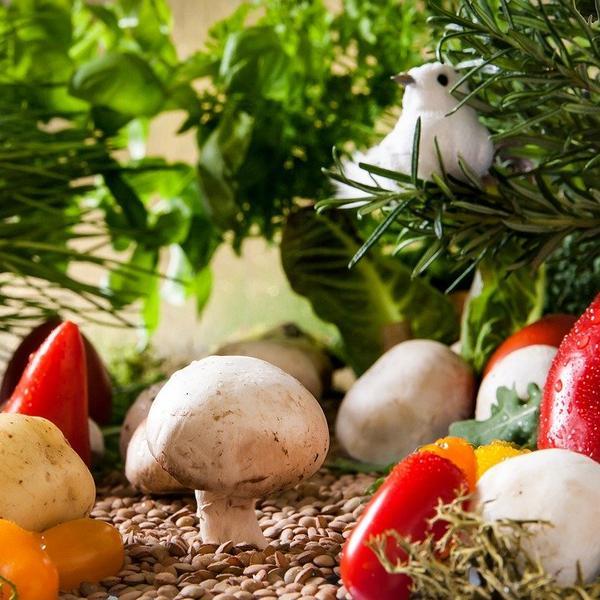 Privilégier les produits biologiques et équitables