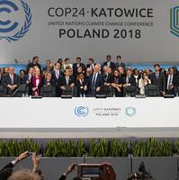 crédit photo : UN climate change