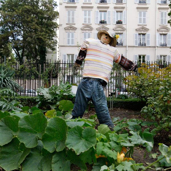 L agriculture urbaine le grand paris de l conomie circulaire agence par - Agriculture urbaine paris ...