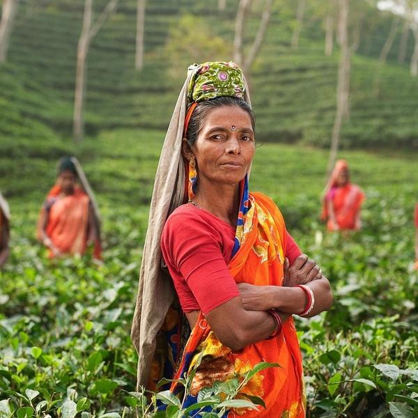 Femmes changement climatique Inde Agriculture